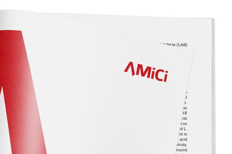 Derstone-AMiCi-magazin3-digital-publishing-